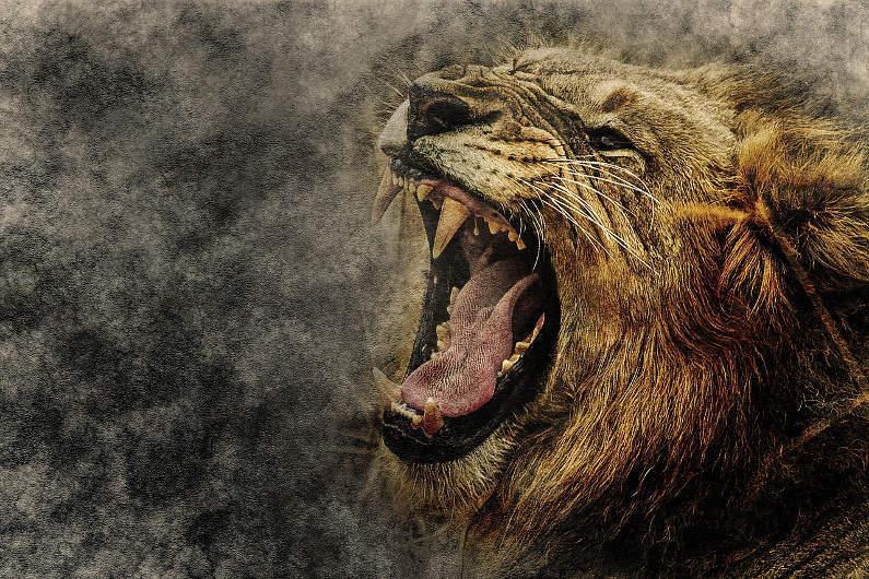 """… som ett rytande lejon"""