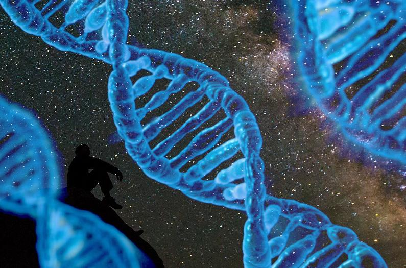 Galaxers (materia) och jordklotets biologiska arters byggstenar och byggnadssätt (metod) i universum avslöjar deras skapelse och skapare 3